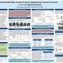 The Sub-MIC Effect of CF-301 on Staphylococcus aureus