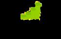 The CSIR Group